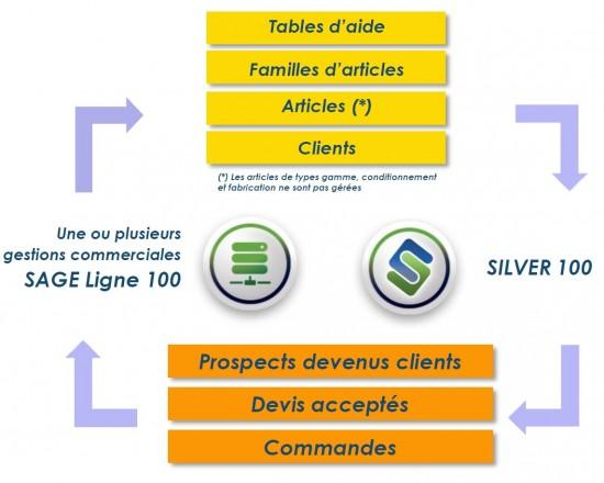 silvertool sage 100